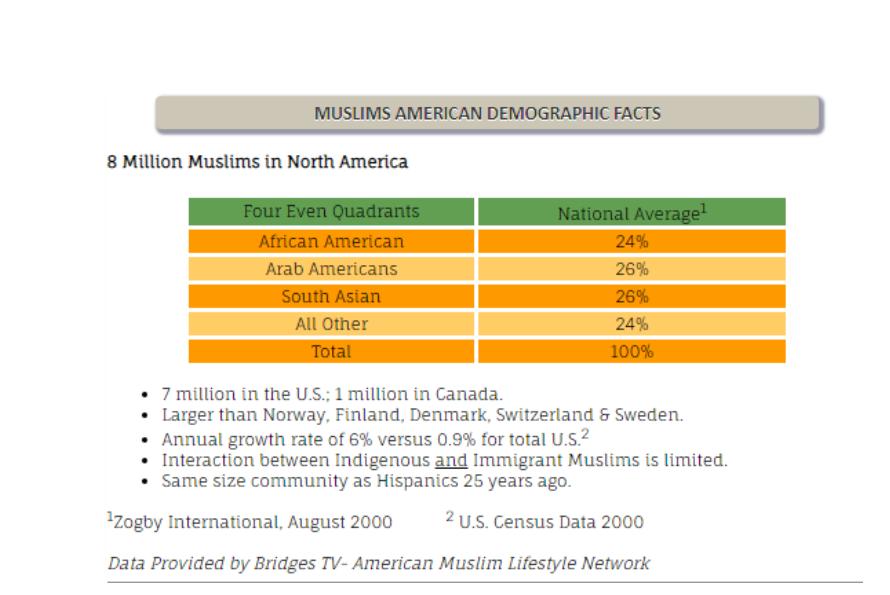 American Muslim Consumer